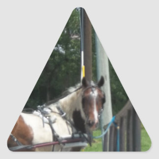 Horse and Buggy Triangle Sticker