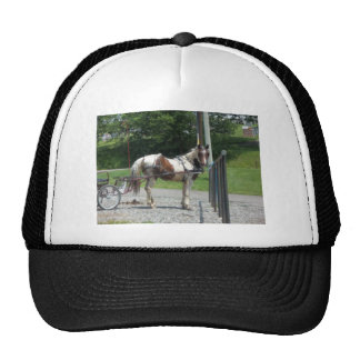 Horse and Buggy Trucker Hat