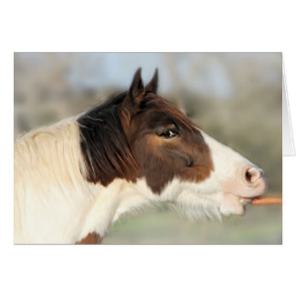 Horse and Carrot Blank 5x7 Greeting Card