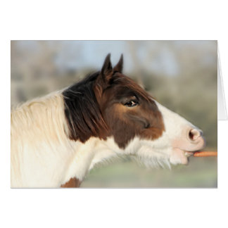 Horse and Carrot Note Card