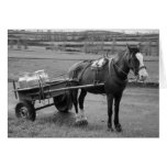 Horse and Cart Card