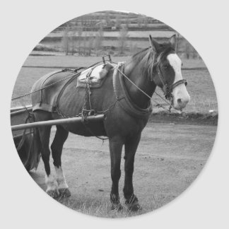 Horse and Cart Classic Round Sticker