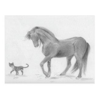 horse-and-cat-friends-pencil-art-gunilla-wachtel-1 postcard