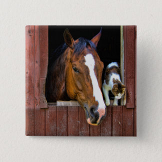 Horse and Cat Pinback Button