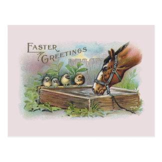 Horse and Chicks Vintage Easter Postcard