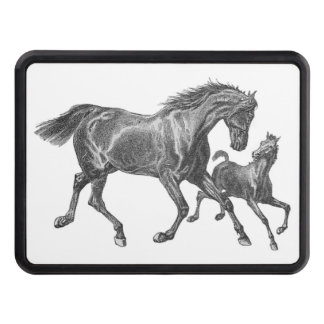 Horse and Colt Horses Running Trailer Hitch Cover