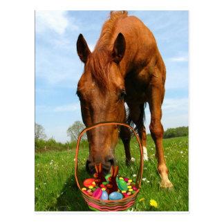 Horse and Easter Basket Postcard