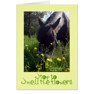 Horse and flowers card