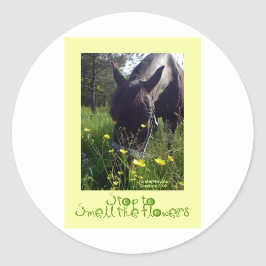 Horse and flowers classic round sticker