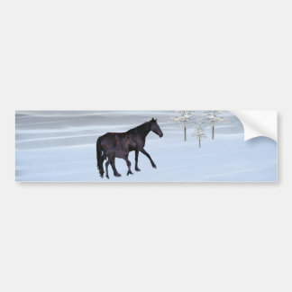 Horse and foal in snow bumper sticker