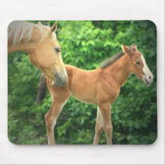 Horse and Foal on a Mouse Pad