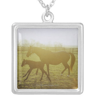 Horse and foal running in pasture necklaces