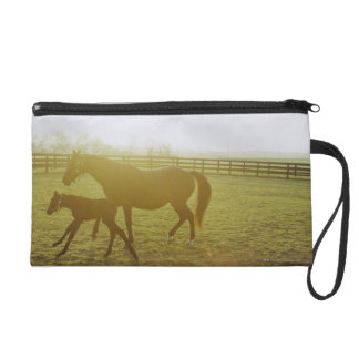Horse and foal running in pasture wristlet