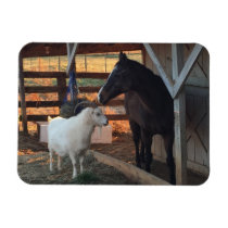 Horse and Goat on the Farm Magnet
