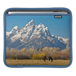 Horse and Grand Tetons, Moose Head Ranch iPad Sleeve