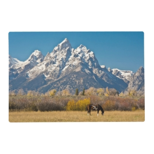 Horse And Grand Tetons, Moose Head Ranch Placemat at Zazzle