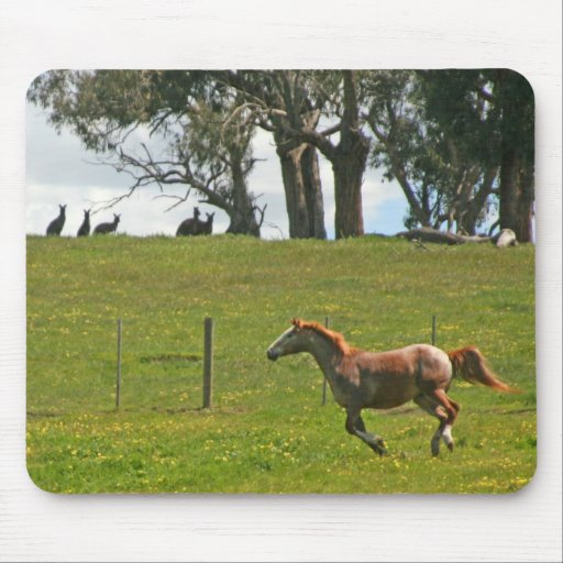 Horse and Kangaroos Mouse Pad