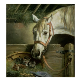 Horse and kittens, 1890 poster