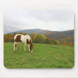 Horse and Mountains Mouse Pad