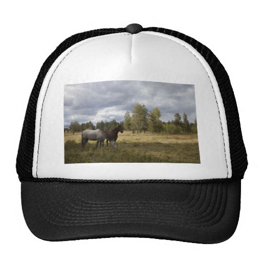 Horse And Nature Hats