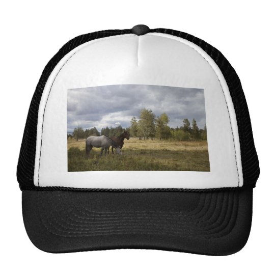 Horse And Nature Trucker Hat