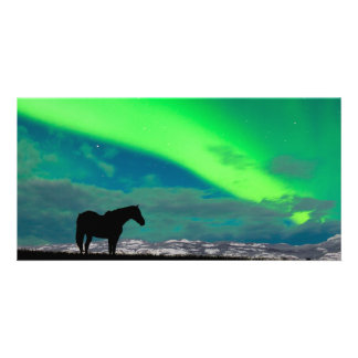 Horse and Northern Lights, Yukon Photo Greeting Card