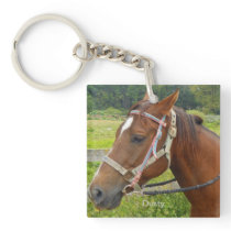 Horse and Owl Key Chain