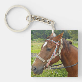 Horse and Owl Key Chain Acrylic Keychain