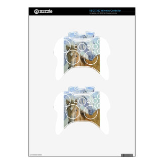 Horse and pony xbox 360 controller skin
