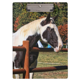 HORSE AND RAIL FENCE CLIPBOARD