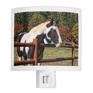 HORSE AND RAIL FENCE NIGHT LIGHT