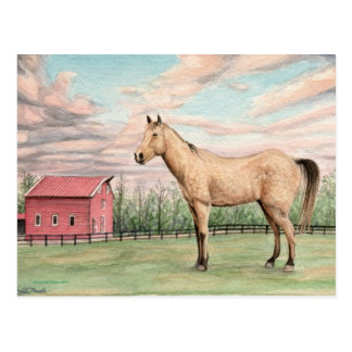 Horse and Red Barn Postacard Postcard