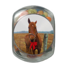 Horse and Red Christmas Bow Glass Jar at Zazzle