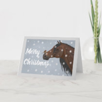 Horse and Robin Christmas Card