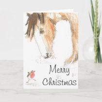 Horse and robin on Christmas morning Holiday Card