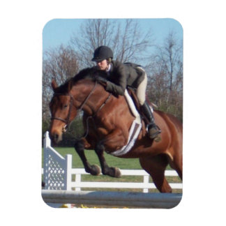 Horse and Show Jumping Premium Magnet