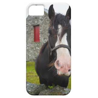 Horse and stone barn in rural England iPhone 5 Cases