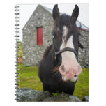 Horse and stone barn in rural England Notebook