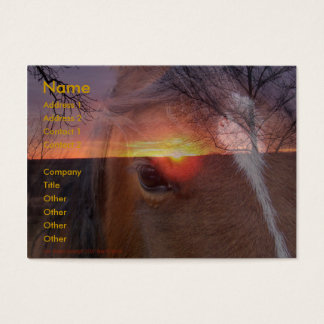 Horse and Sunrise Business Card