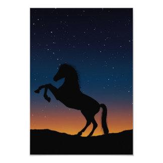 Horse Animal Nature Card