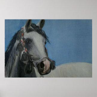Horse-Arab Posters