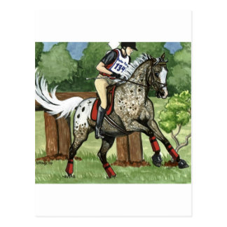 Horse Art APPALOOSA Eventing Postcards