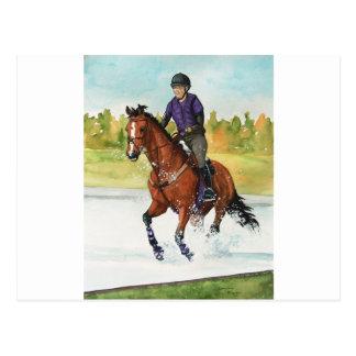 HORSE ART Cross-Country Thru Water Postcard