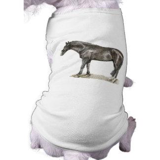 Horse Art Pet Clothing
