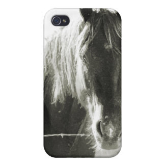 Horse At Fence iPhone 4 Cover