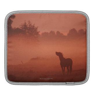 Horse at sunrise iPad sleeve