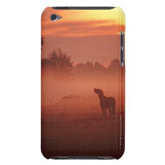 Horse at sunrise iPod Case-Mate case