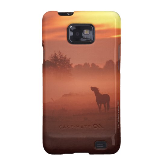 Horse at sunrise samsung galaxy s2 cover