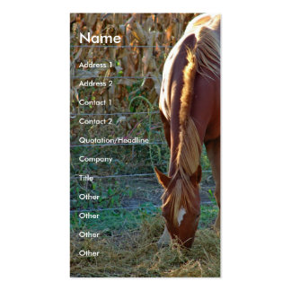 Horse at Sunset Business Cards