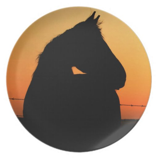 Horse at sunset plates